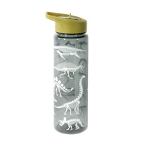 Fun Times Dinosaur Drink Bottle -  I.S. Gifts