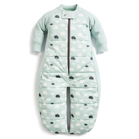 ergoPouch 2.5 tog Sleep Suit Bag  4 Sizes Mint Clouds